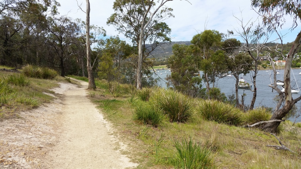 Track to shag bay