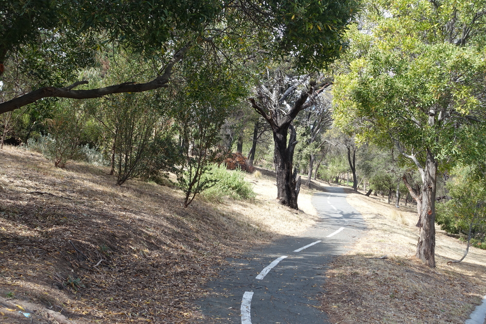 cycleway, rosny point