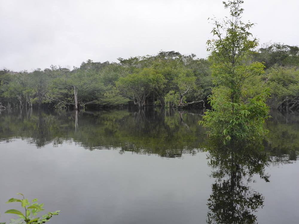 rio urubu