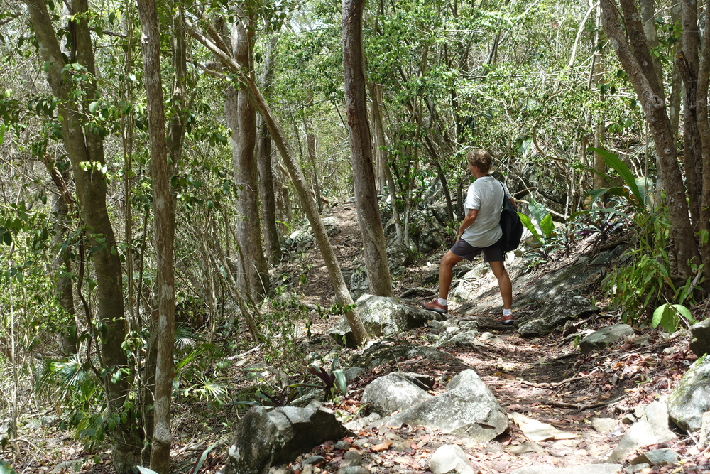 trekking on st john