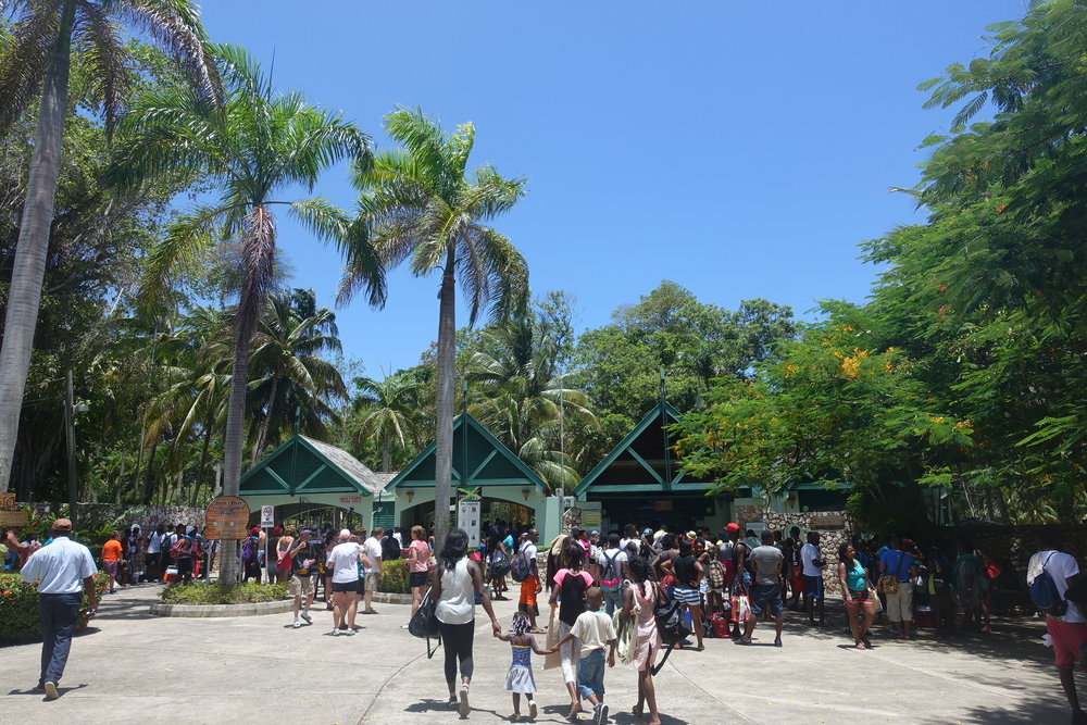 the entrance to dunn's river falls