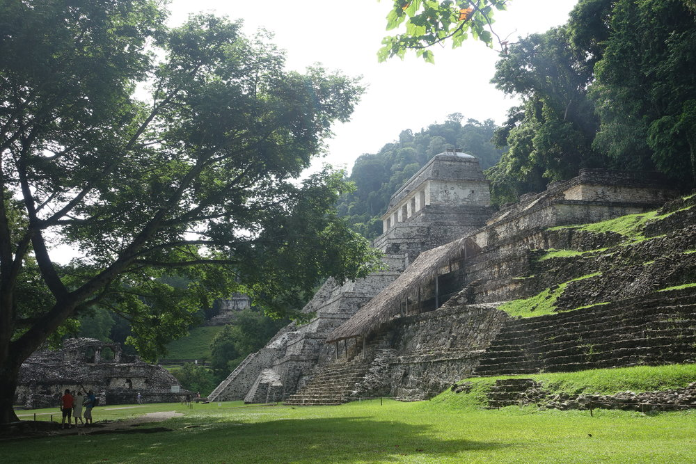 temple of the inscriptions - Palenque