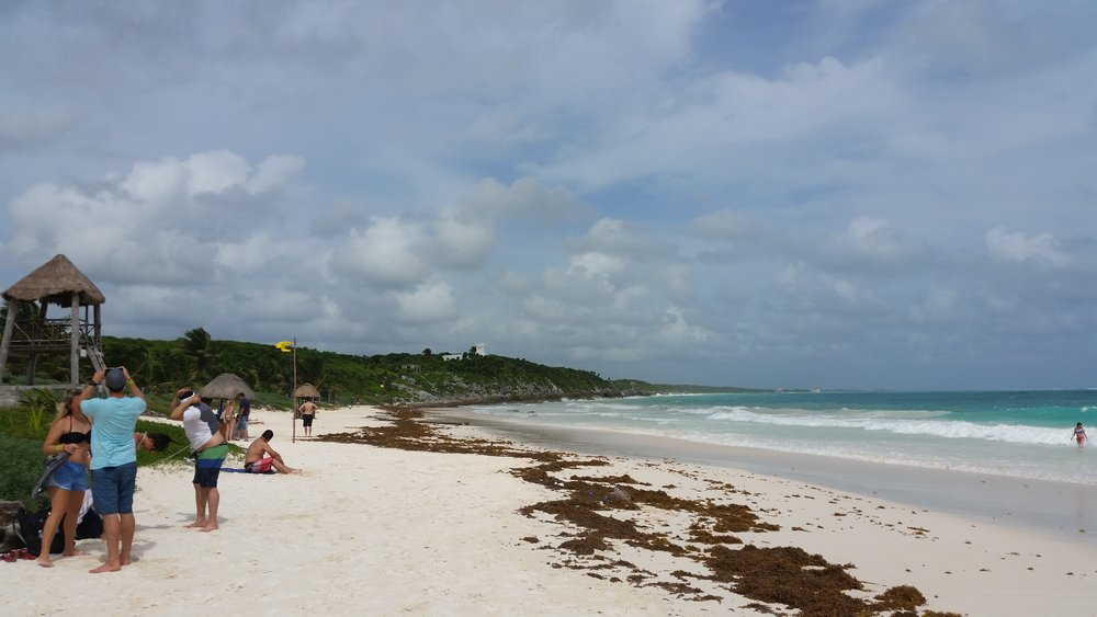the beach at tulum archeological site