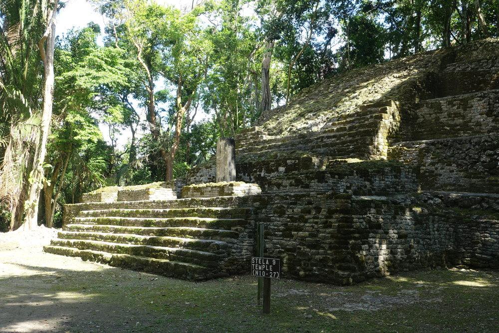 stela 9 temple