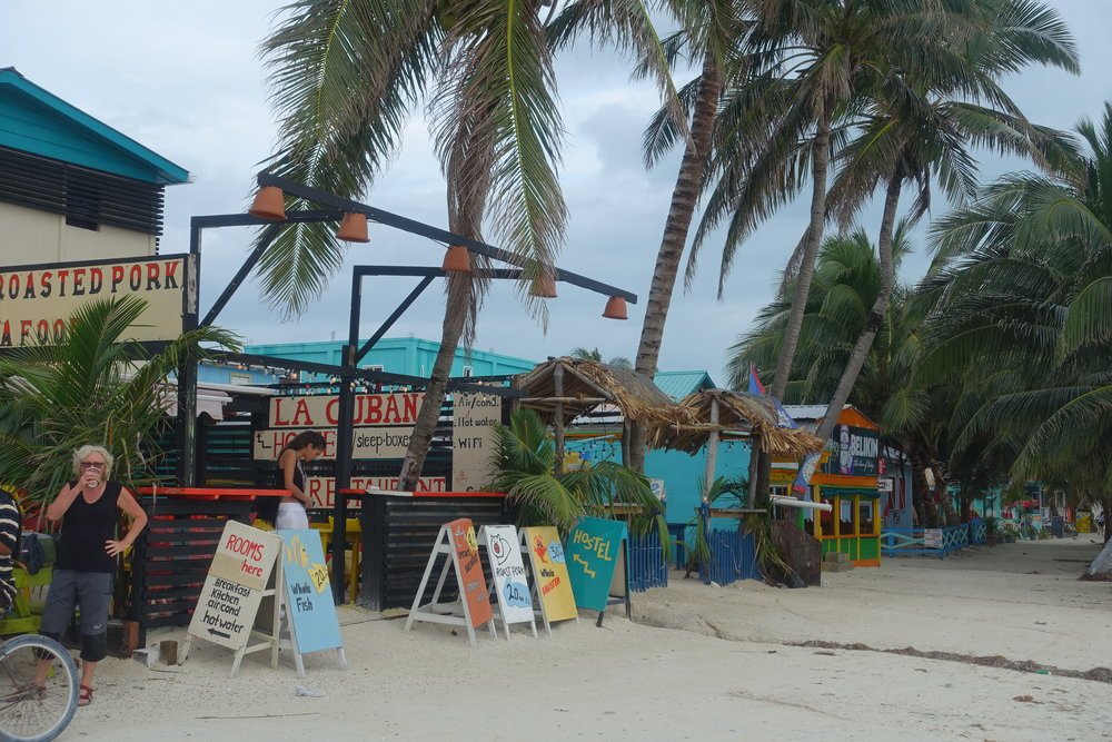 caye caulker today