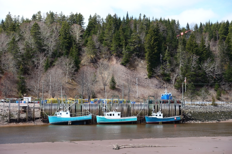 boats on the fundy coast