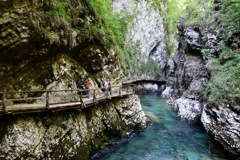 the walkway through vintar gorge