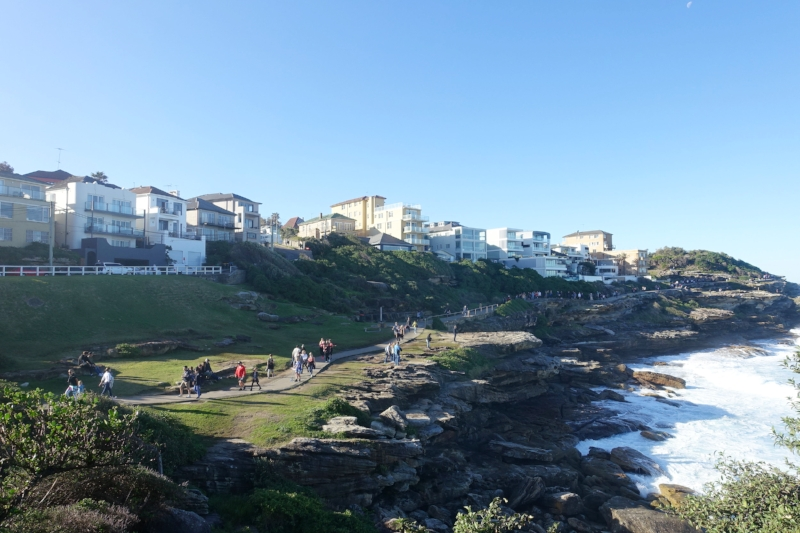 bronte to bondi coastal walk