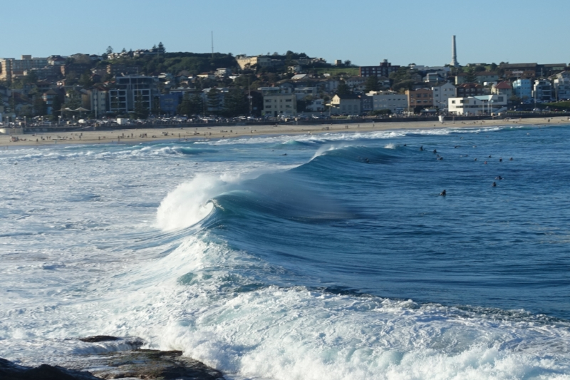 surf at bondi