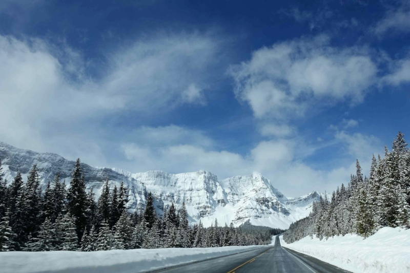 cruising the canadian rockies