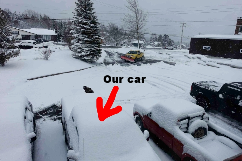 snowplough to the rescue - newfoundland