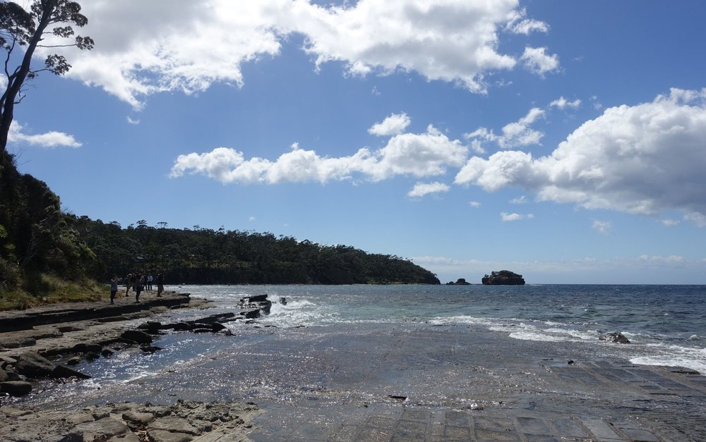 Clydes island is a short walk north of the tessellated pavement