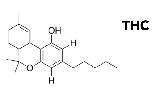 THC-tetrahydrocannabinol-chemical-compound