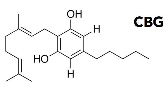 CBG-cannabigerol-chemical-compound