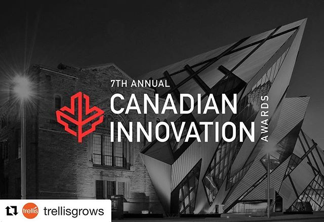 We can't think of a more deserving team for this nomination. Congratulations to the @trellisgrows team. We're pullin' for ya!  #Repost @trellisgrows (@get_repost) ・・・ We have been nominated for the Canadian Innovation Awards! We are are both thrilled and humbled about this opportunity. Thank you to all of you who have supported us along the way, it means more to us than words can express. We would like to give a special thank you to @gateway.vc and the entire #trellisgrows team. Congratulations to our CEO @psood__ hard work truly does pay off! #trellis #canadianinnovation #canadianinnovationawards #techvibes #seedtosale #compliance #cannabissoftware #cannabistechnology #cannabistech #cannabisculture #cannabiscommunity #cannabis #startup #innovation