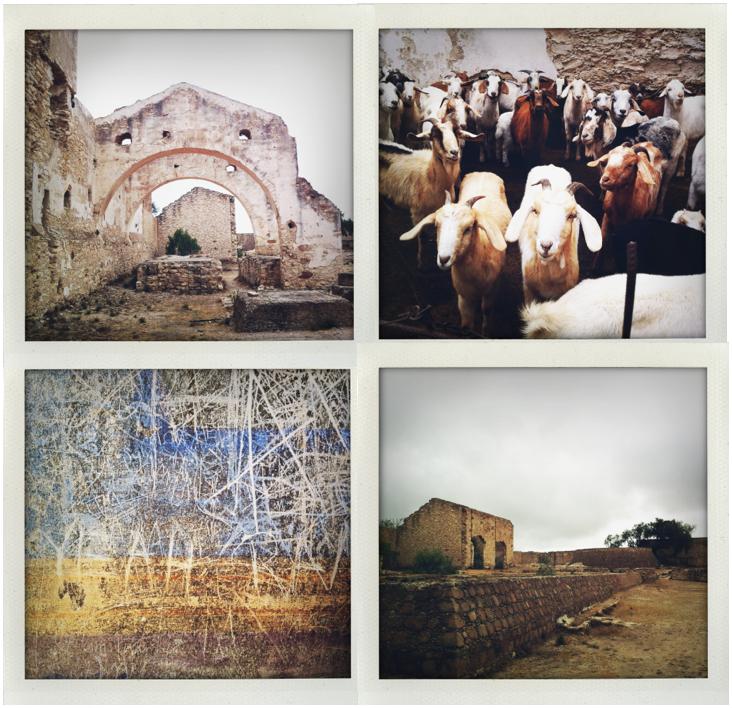 San Miguel Ruins Quad