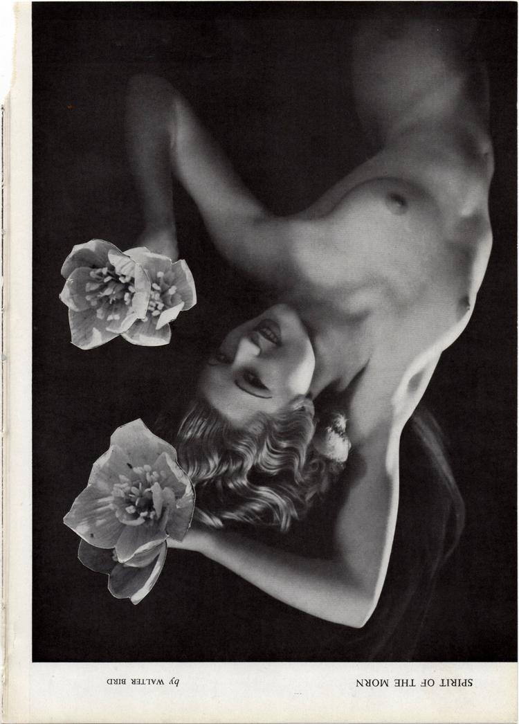 woman+2.jpg