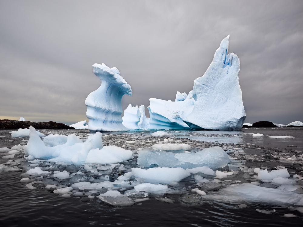 JPG (8-bit)-15_0202-Antarctica 2-CF000240.jpg