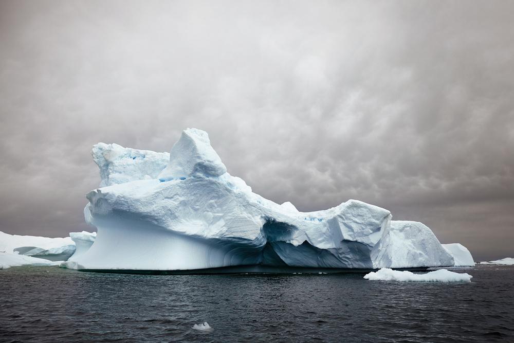 JPG (8-bit)-15_0202-Antarctica 2-IMG_8518.jpg