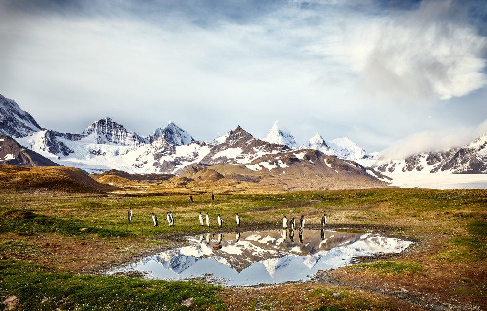 JPEG (8-bit)-16_1108-Antarctica-CF001176.jpg