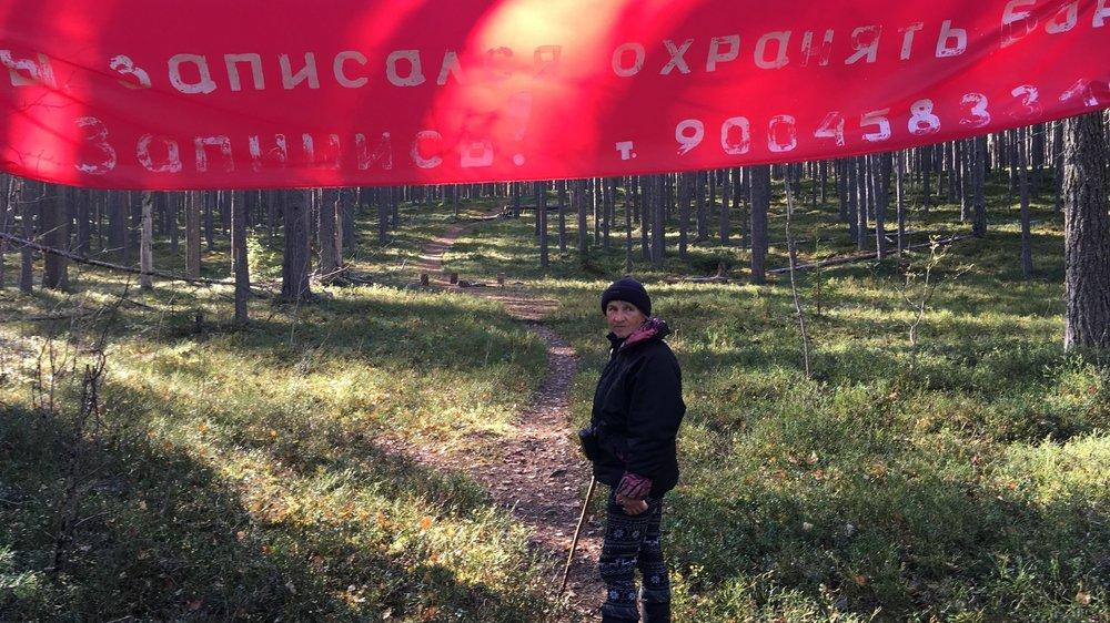 Ryska pensionärer ockuperar skog - Lyssna på Studio Ett i P1
