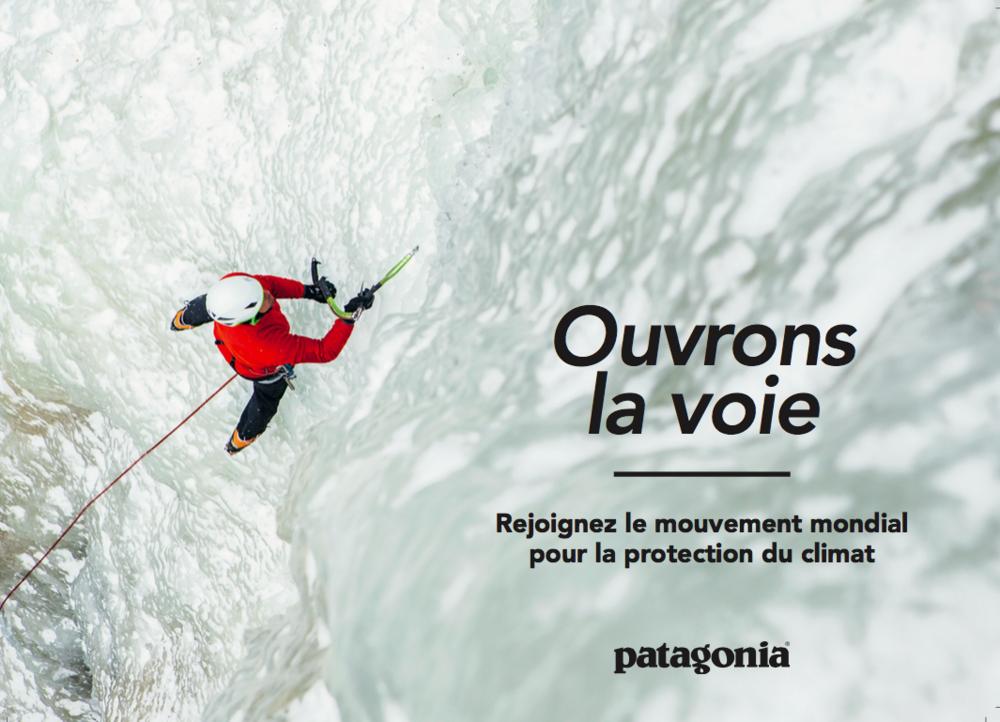 Patagonia Online-Banner 3