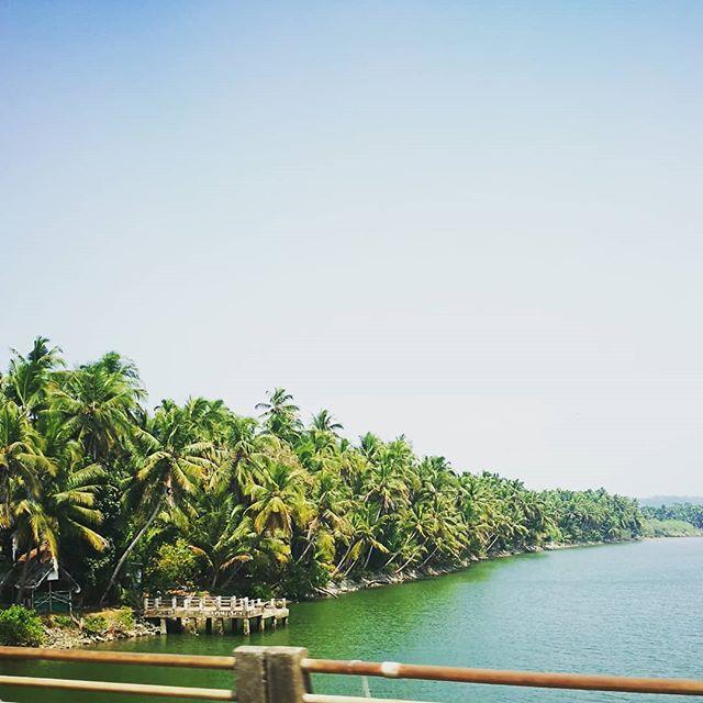 Konkan coast to Kerala 🌴  #onward #beautyallaround #homewithin #athomeintheworld