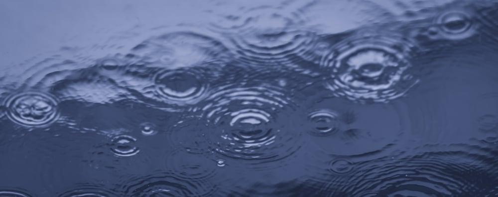 1/800e sec @ F2,4 korte sluitertijd om de regendruppels scherp en bevroren in beeld te krijgen