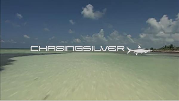 chasingsilver.png