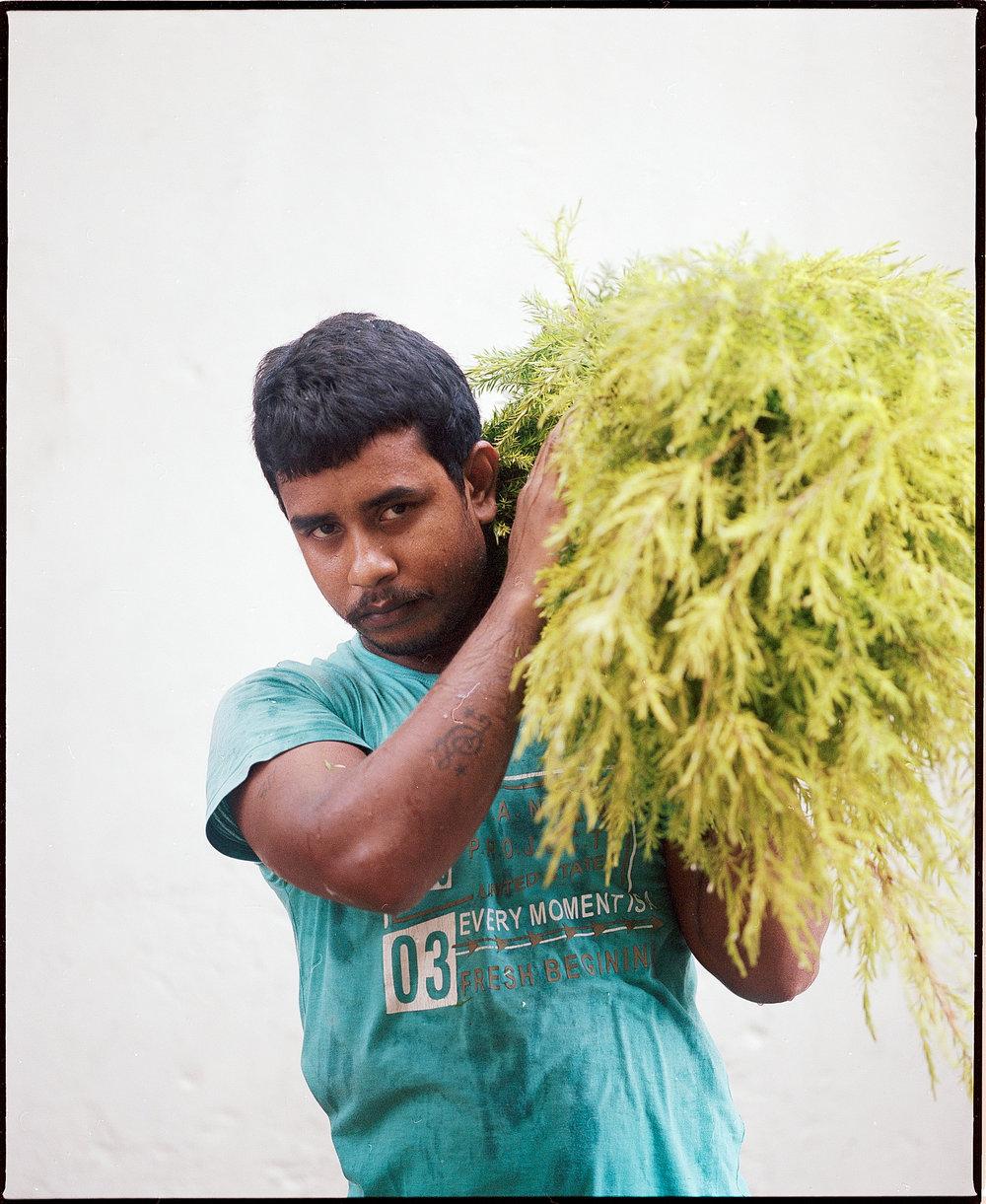 Kolkata_Flowers-31.jpg
