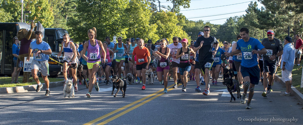 coastal humane society, paws for a cause 5K, freeport, august 2016