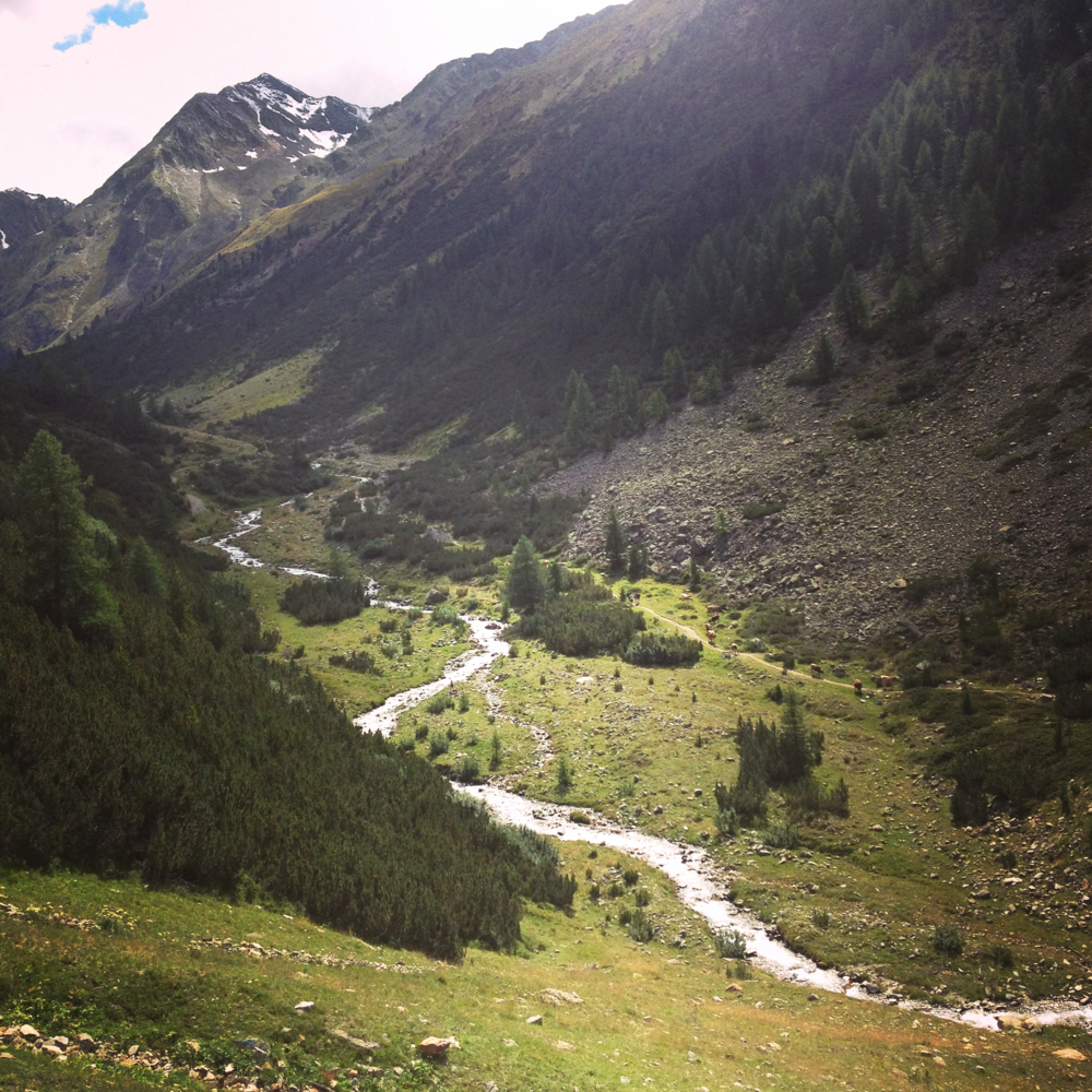 TRAILS AND BIKING TRIPS //     ITALY   Two biking destinations with endless trails and biking possibilities.