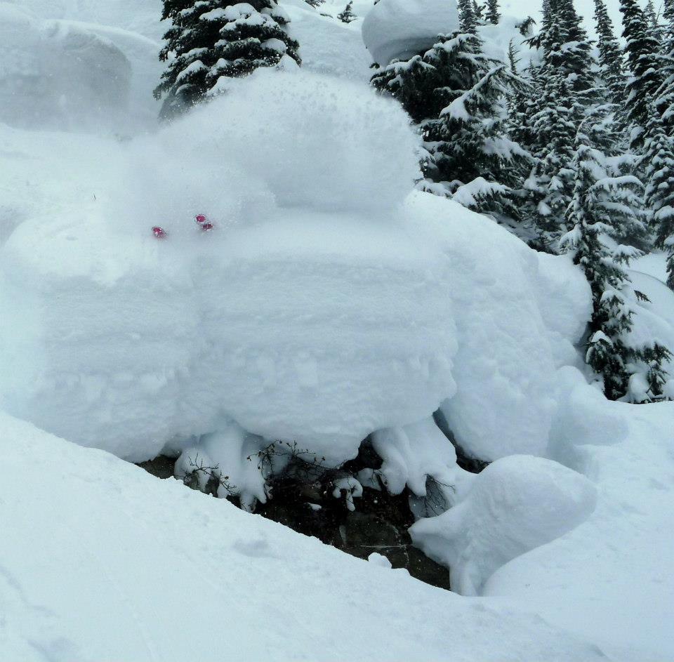 Powder skiing Canada