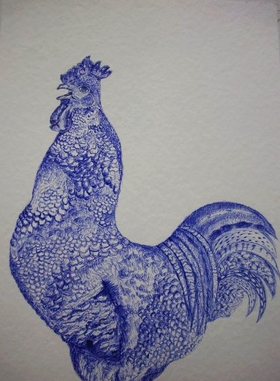 Cock by 1, Blue Ballpoint Pen on Watercolour Paper, 2009