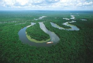 Oxbow Shaped Amazonian River