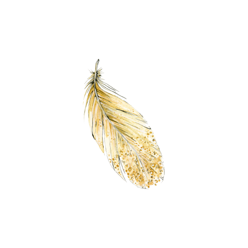 Feather 4_500x500.png