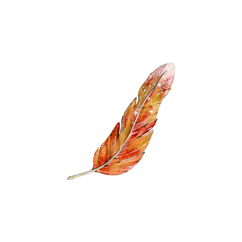 Feather 6_500x500.png