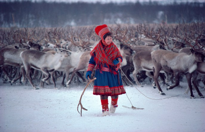 Sami Reindeer Woman, source  Arctic Photo