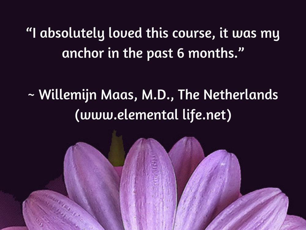 Testimonial - Willemijn.jpg