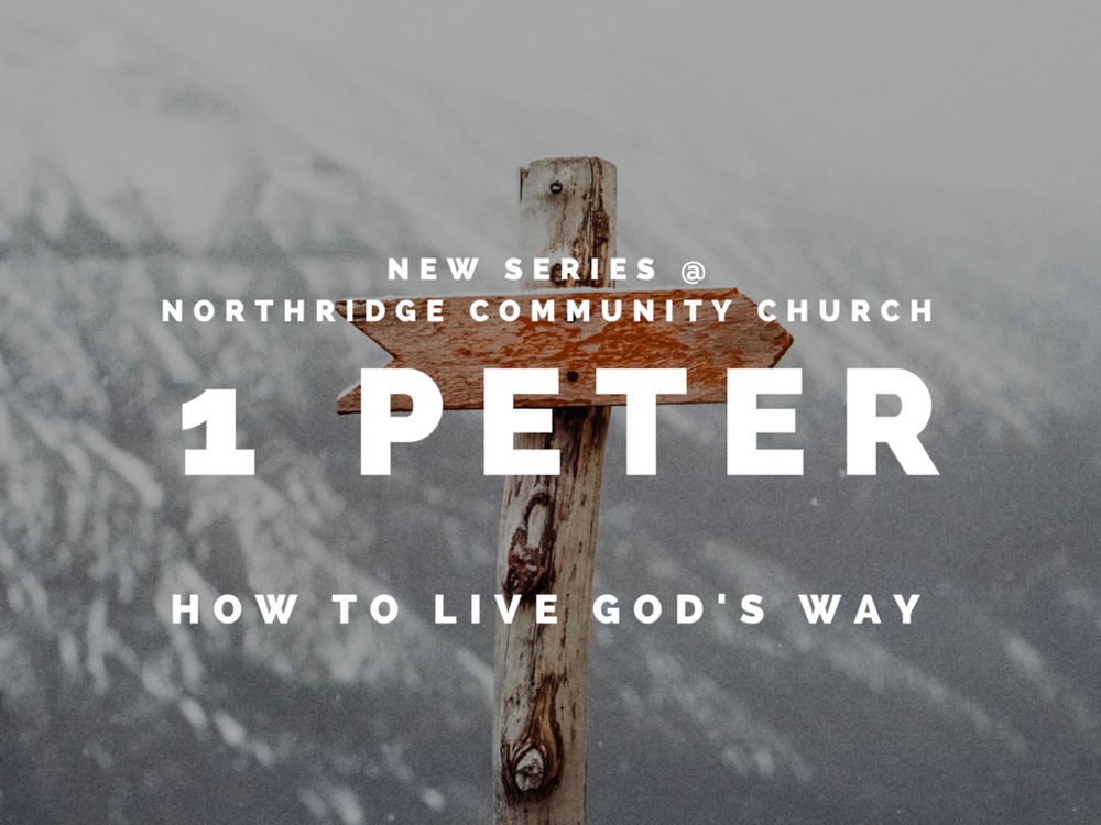 Sermon Series on 1st Peter - Sermon #1 - Encouraging Words in a Discouraging WorldSermon #2 - Choosing to be DifferentSermon #3 - Who Do You Think You Are?Sermon #4 - Standing Out!Sermon #5 - Hope for Your Home and RelationshipsSermon #6 - Maturity MarkersSermon #7 - A Confident HopeSermon #8 - Hold OnSermon #9 - A Significant Life
