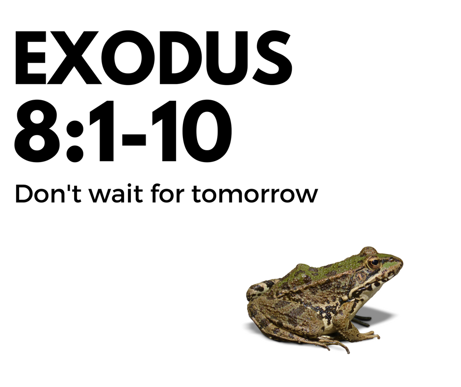 exodus8.png