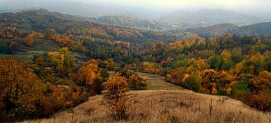 autumn-990722__180.jpg