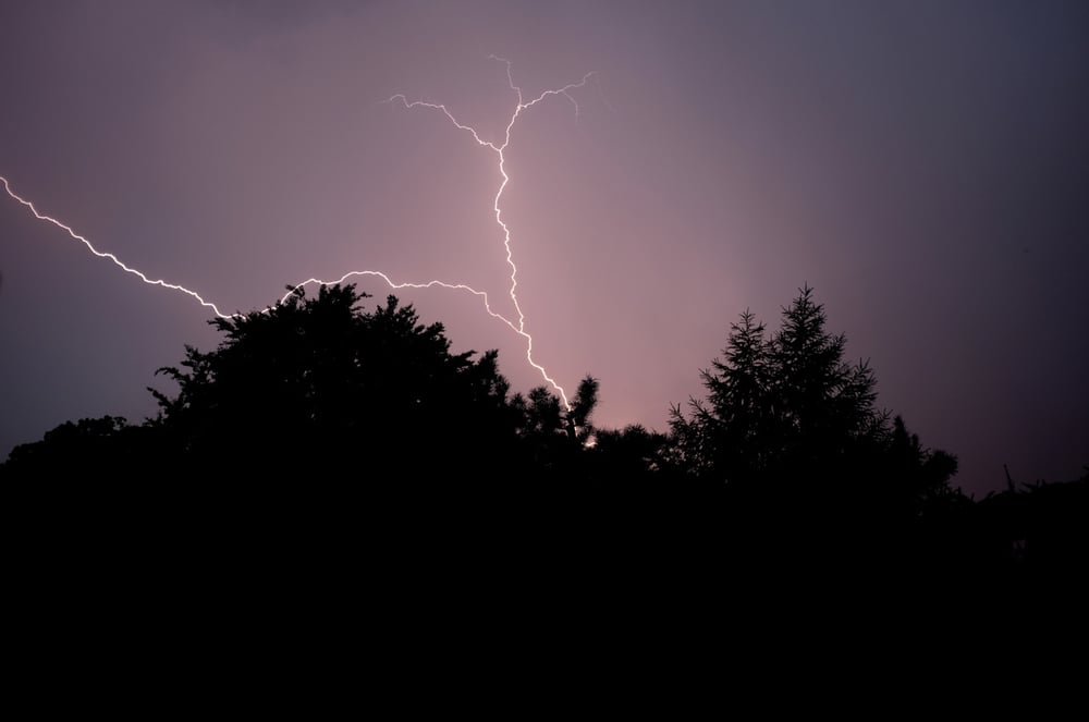This weekends storm captured in my garden