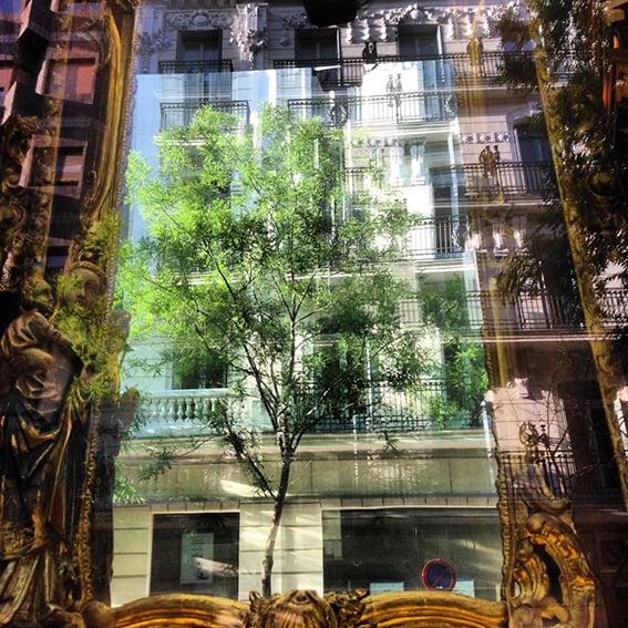shop window Madrid