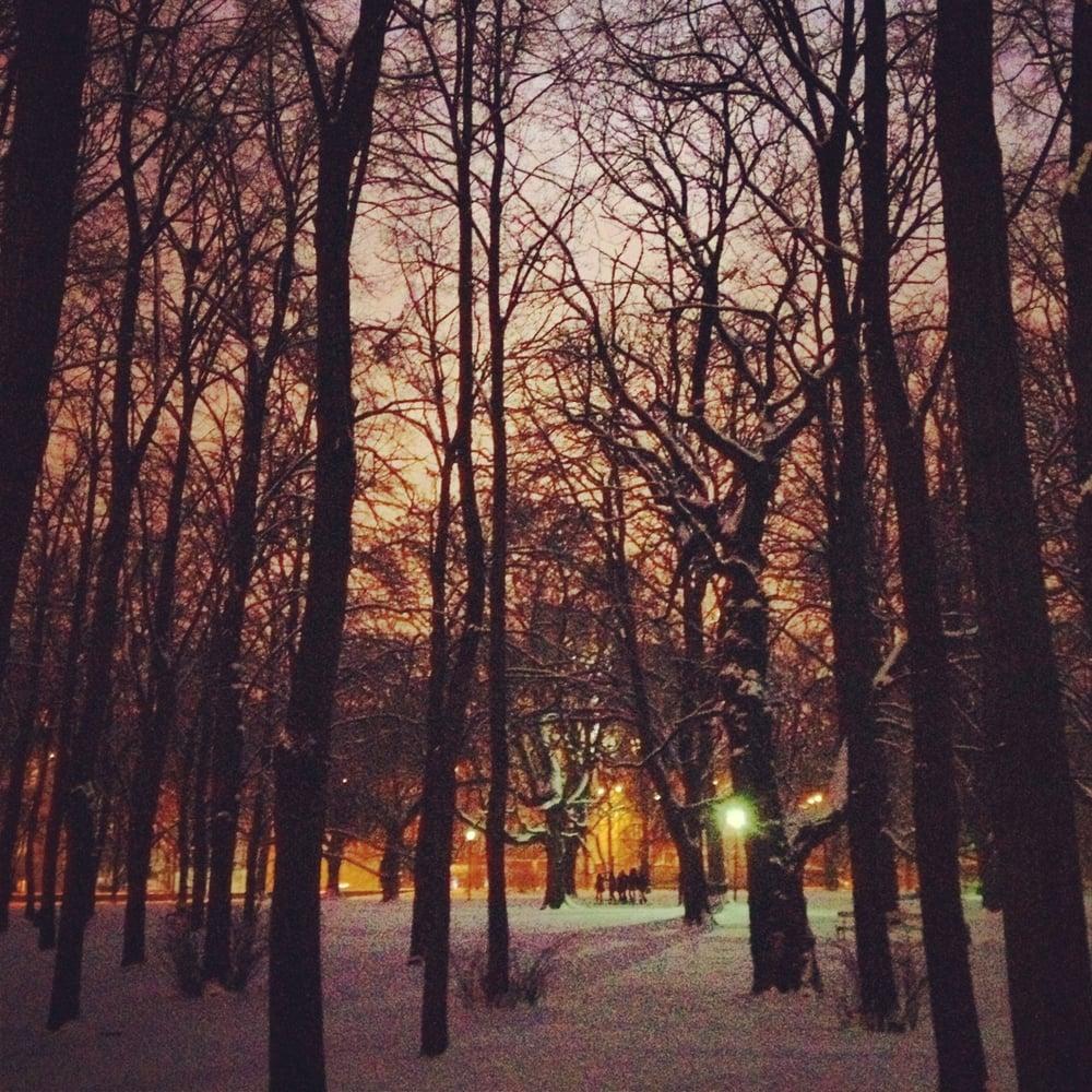 Saxon gardens Warsaw