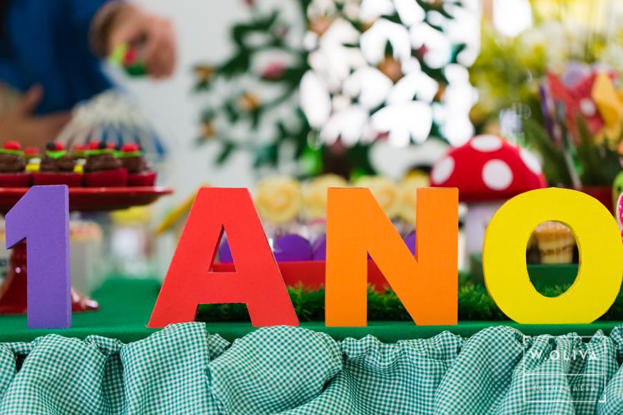 Aniversario infantil Rio de janeiro-38.jpg