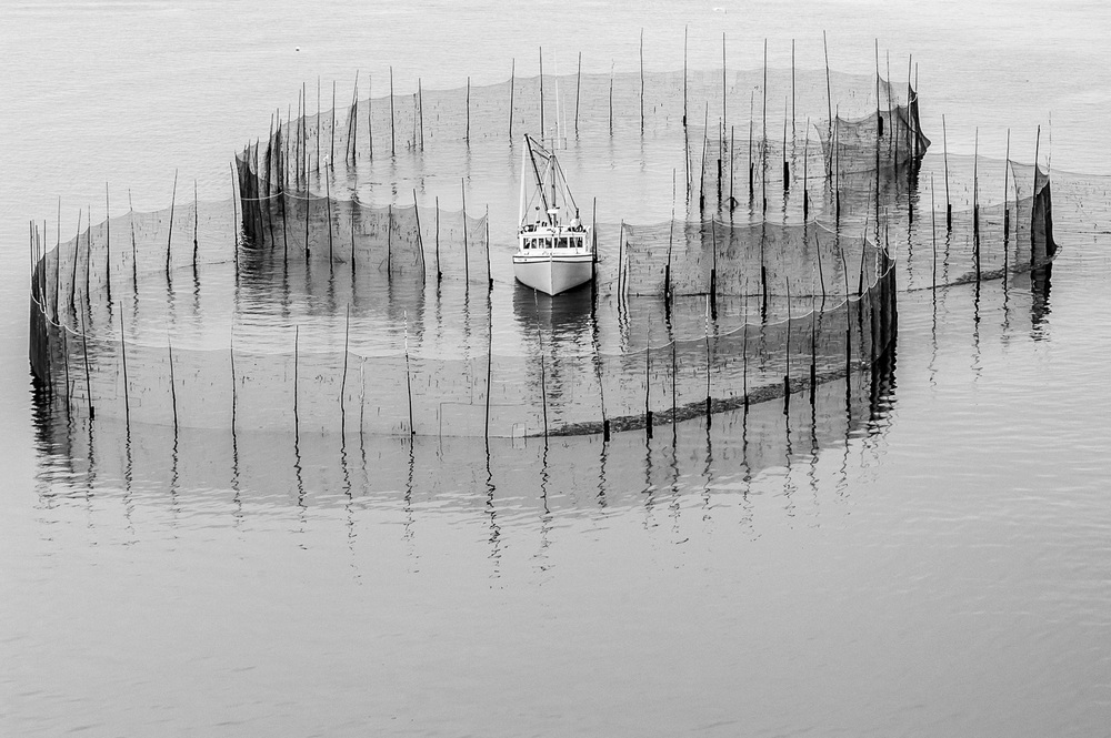 bay of fundy b&w weirs_151