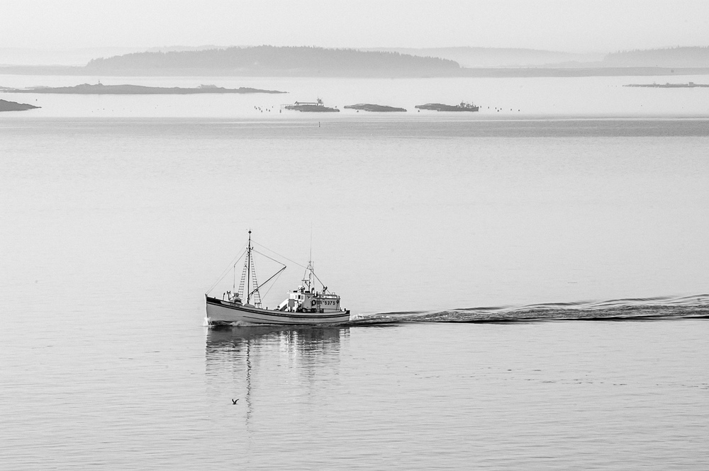 bay of fundy sea scapes_255