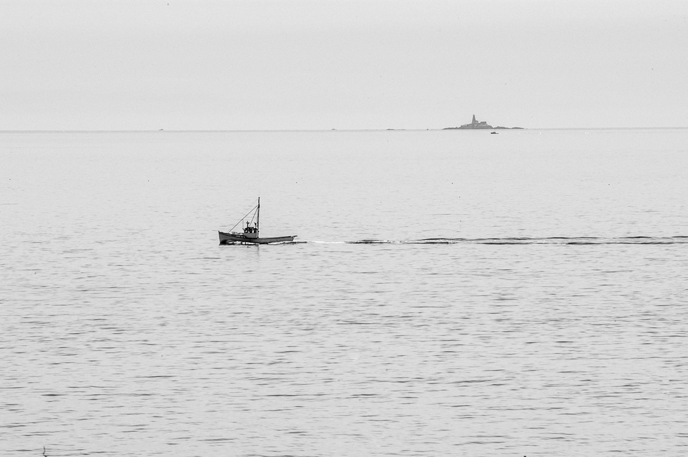 bay of fundy sea scapes_257