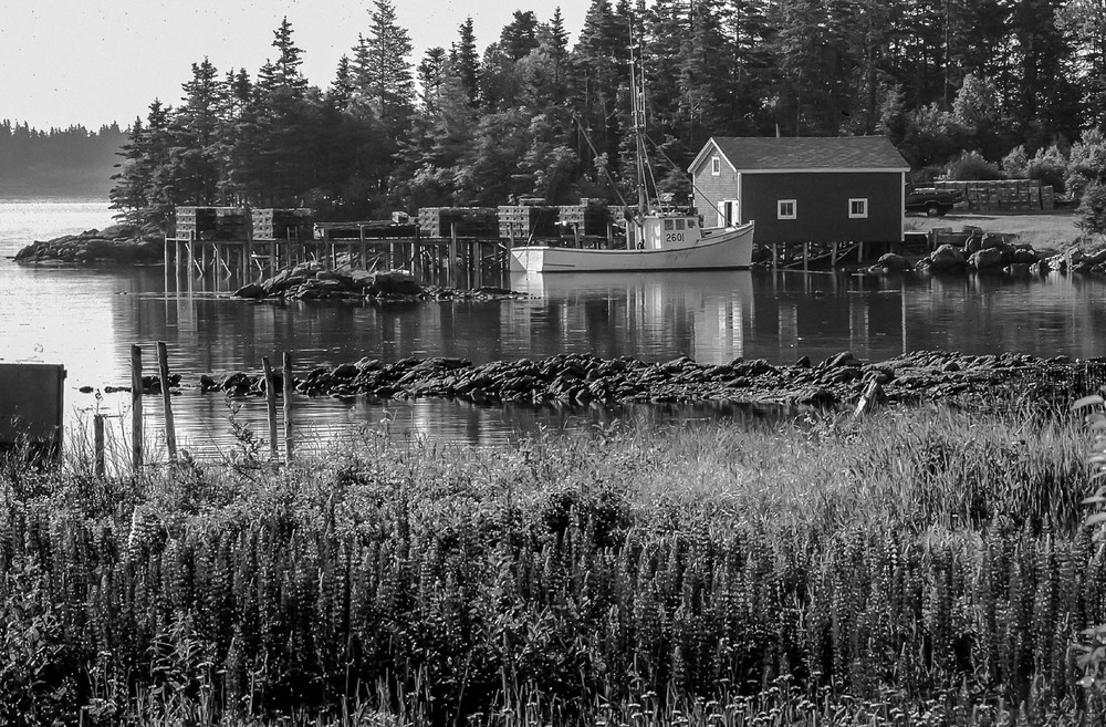 bay of fundy sea scapes_262